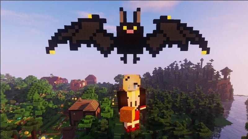 Quand présenta-t-elle sa première vidéo Minecraft ?