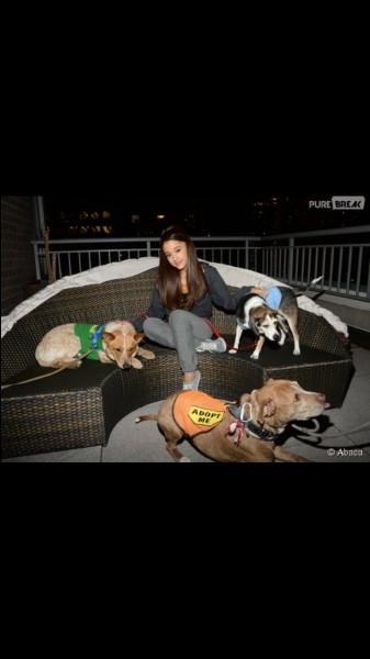 Combien de chiens a-t-elle ?