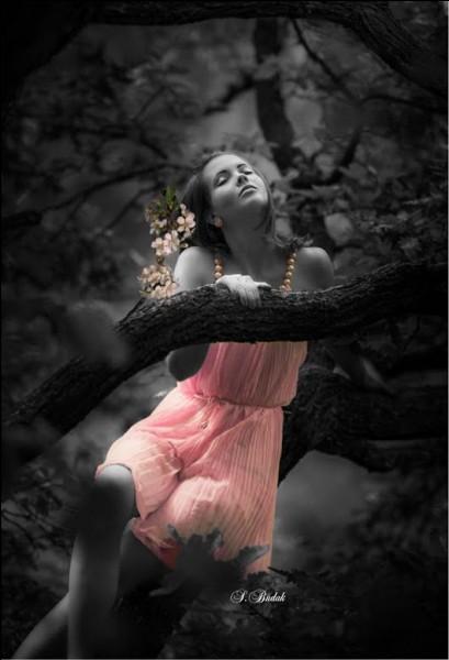 """À qui sont les paroles """"Elle n'en sort plus de ta mémoire, ni la nuit, ni le jour, elle danse derrière les brouillards"""", extraites de la chanson """"C'est écrit"""" ?"""