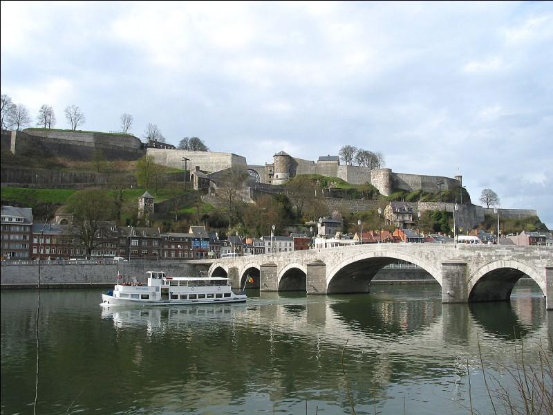 Ruhe - Namur est la capitale de la région de la Wallonie. Vrai ou faux ?