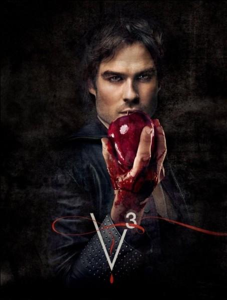 Dans ''Vampire Diaries'' qui est Damon pour Stefen ?