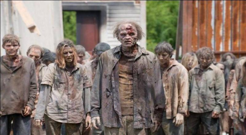 """Qui chante """"Zombie"""" une reprise du groupe The Cranberries ?"""