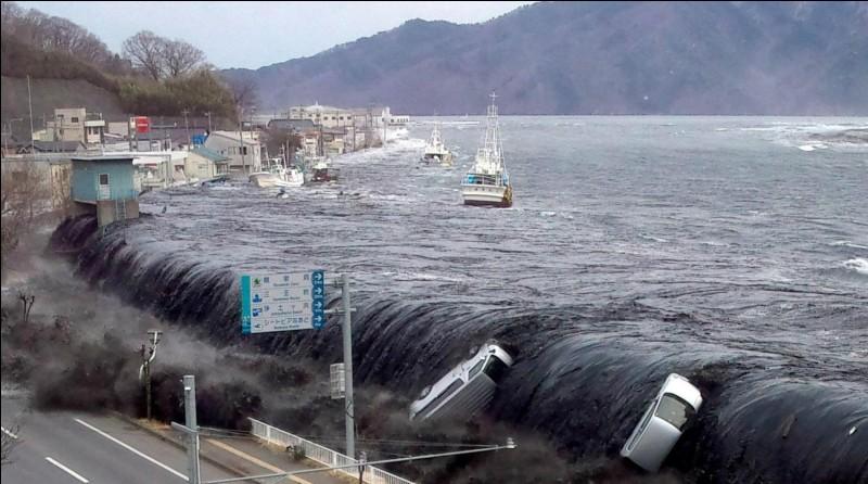 """Quel nom de phénomène naturel est tiré du japonais signifiant """"vague de port"""" ?"""