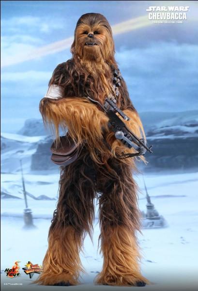 Comment se nomme l'acteur incarnant Chewbacca ?