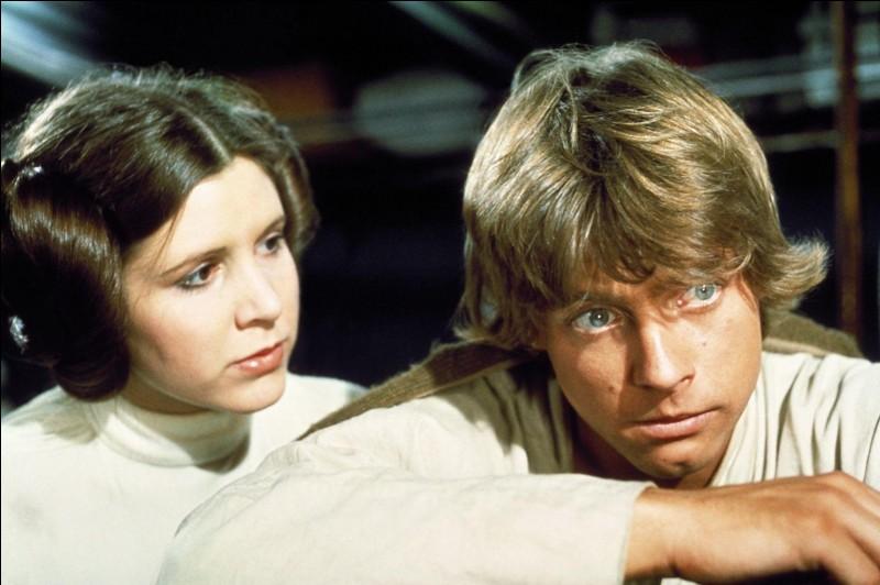 Luke Skywalker et Leia Organa sont (plusieurs réponses possibles) :