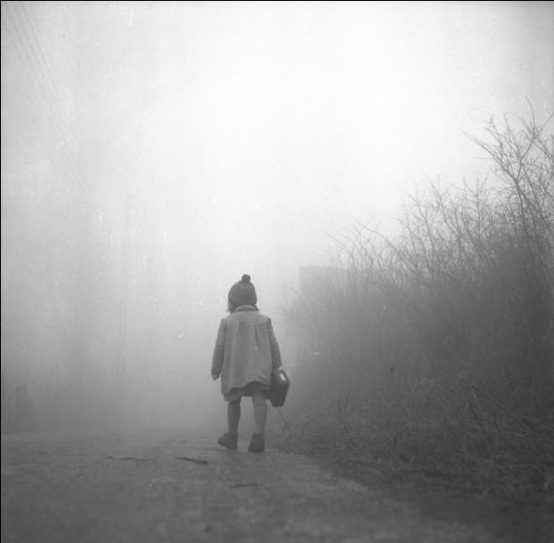 Si le brouillard est très épais et la visibilité nulle, et que je vous dis qu'il y a un peu de brume, quelle figure de style est employée ?
