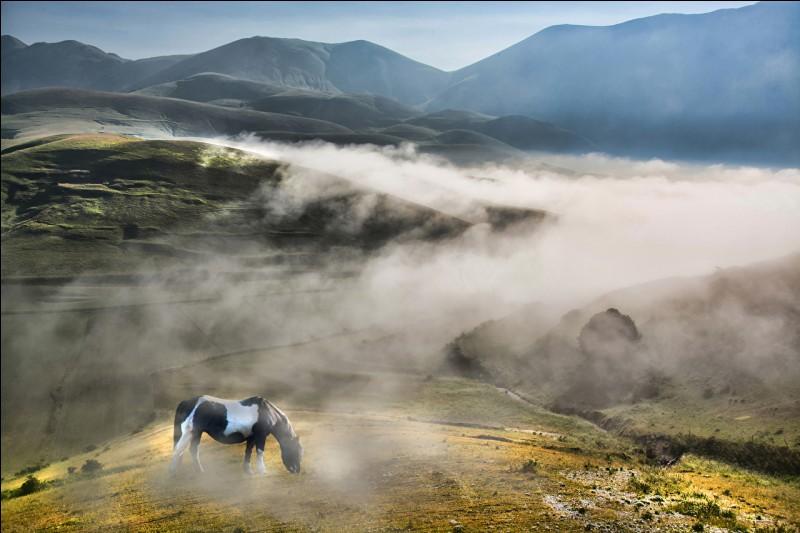 Quel terme est employé par la météo pour nous annoncer que des nuages vont rester accrochés à la montagne, ce qui est très joli, vu de loin, mais qui donne une oppressante impression de brouillard quand on est dans la zone concernée.