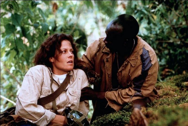 Quels animaux sont dans la brume dans le titre du film de Michael Apted relatant la vie de Diane Fossey ?