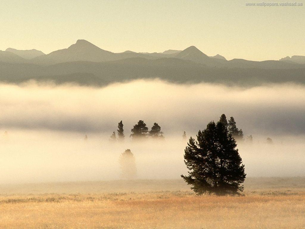 Brumes et brouillard sur la culture générale !