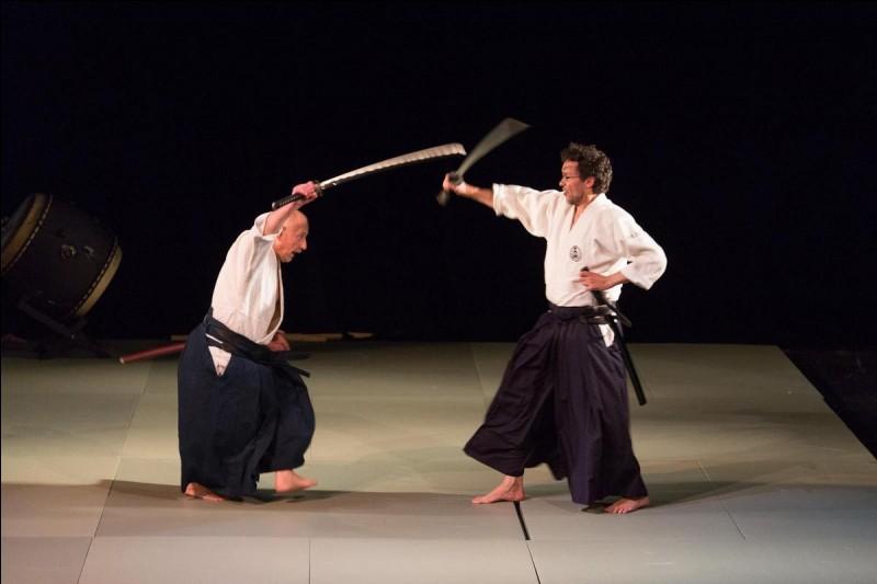 """Lequel des sports suivants traduit """"arts martiaux"""" ?"""