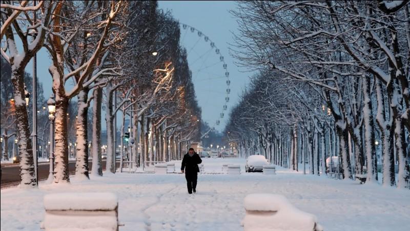 """Comment dit-on """"La neige est blanche"""" ?"""
