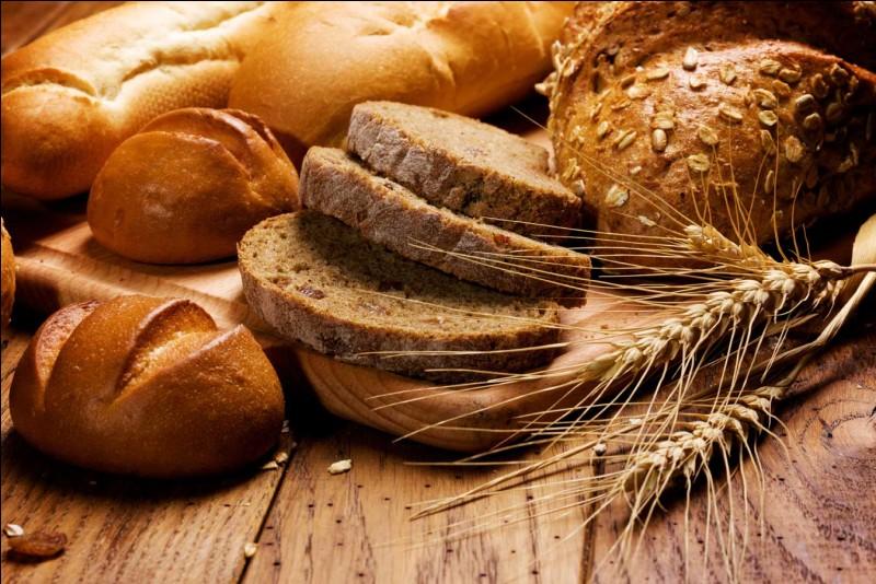 """Que veut dire """"pane"""" ?"""