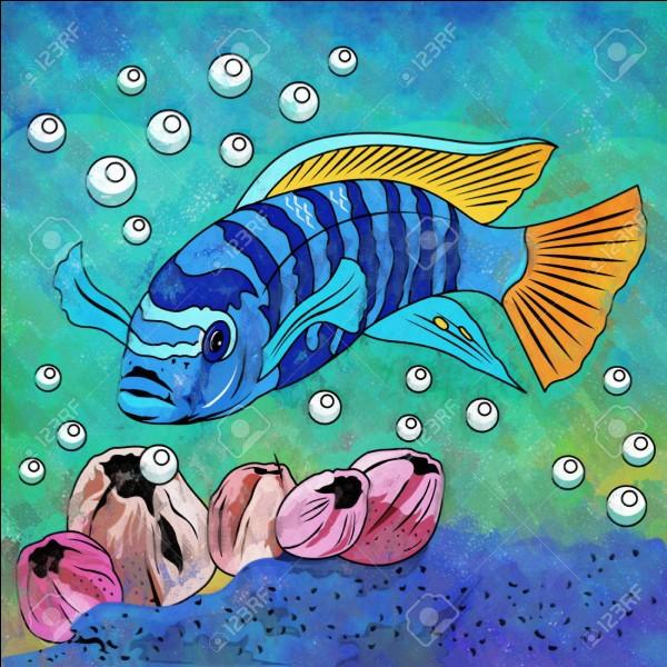 Quel poisson se mange traditionnellement à l'escabèche ?