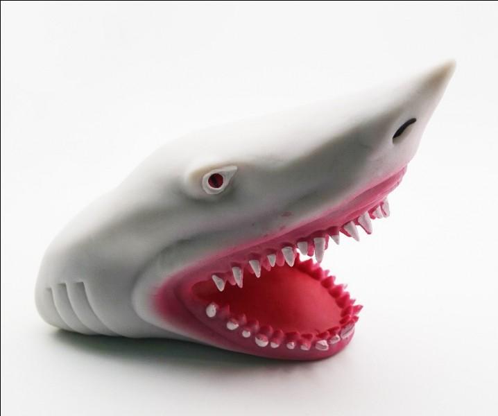 """En anglais comment dit-on : """"tête de requin"""" ?"""