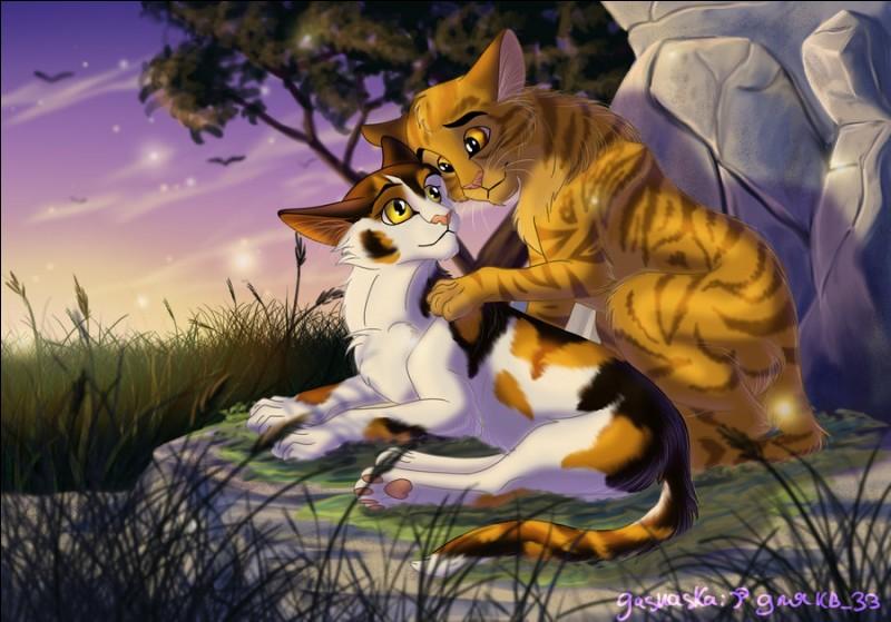 Sortons du cercle familial, et entrons dans celui de l'amour. Poil de Fougère et sa compagne sont deux chats très appréciés, mais aussi un couple très aimé. Sauriez-vous me dire qui est sa bien-aimée ?