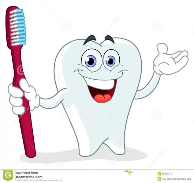 Quand la brosse à dents est-elle arrivée en France ?