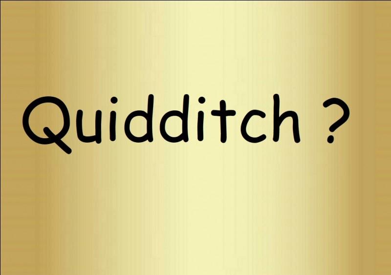 Qu'est-ce que le 'quidditch' ?