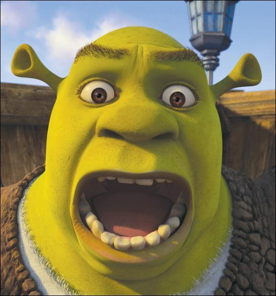 Pourquoi Shrek réalise-t-il le sauvetage de Fiona dans Shrek ( le premier ) ?