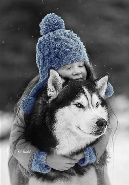"""Quel animal est """"en hiver"""" dans le titre du livre d'Antoine Blondin ?"""