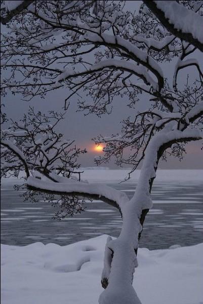 """Qui chantait """"Il gèle à fendre des cailloux, y a du blanc jusque dans la mer, le ciel touche la terre au bout"""" ?"""