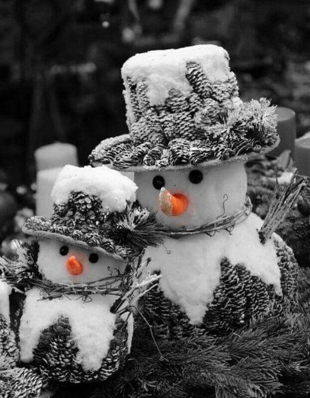 Culture aux couleurs de l'hiver !