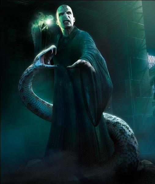 """Dans """"Harry Potter et les Reliques de la Mort"""" (partie 2), quand Voldemort comprend que Harry connaît l'existence des Horcruxes, à qui demande-t-il de ne pas s'éloigner ?"""