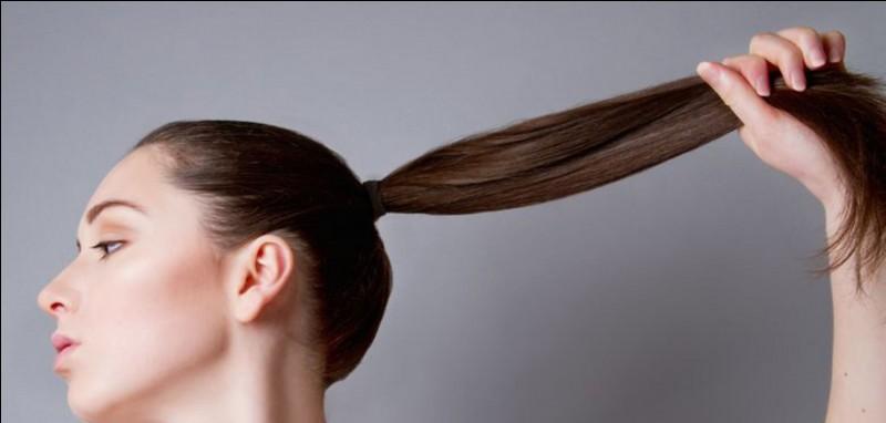 Quelle serait ta coiffure ?
