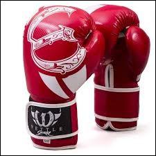Lequel de ces trois animaux est un champion de boxe ?