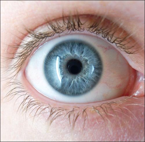 La couleur des yeux ou des cheveux dépend des gènes transmis par les parents.