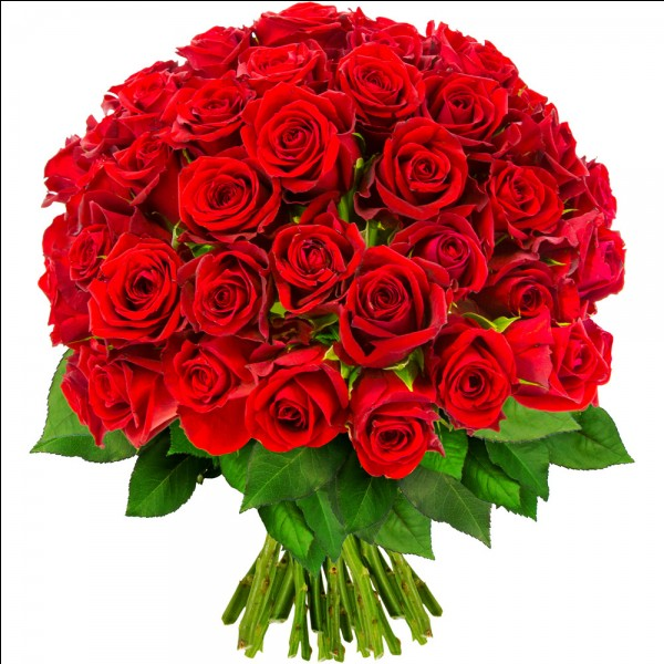 """Ces """"fleurs"""" de Pline ont pour auteur..."""