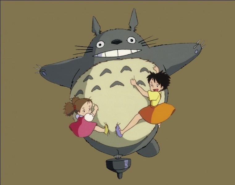 Quel long métrage fait-il réellement partie du studio Ghibli ?
