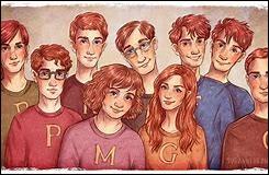 Pourquoi apprécies-tu la famille Weasley ?