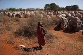 Sur quel continent se trouve la Somalie ?