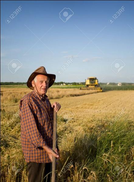 Un paysan se dit :