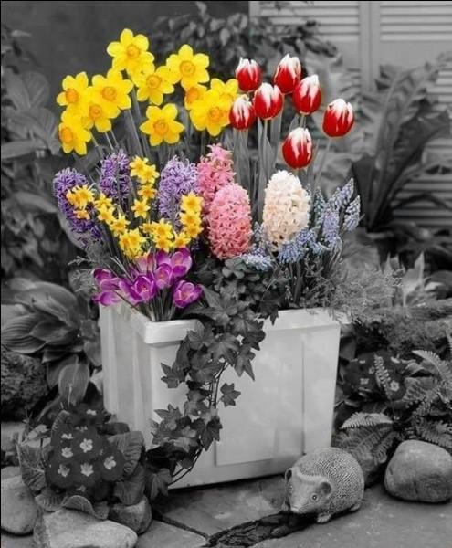Afin que vous puissiez m'envoyer quelques fleurs, je vous informe que je ne suis pas née au printemps, mais un 14 septembre. Qu'ai-je encore pris l'an dernier à cette date ?