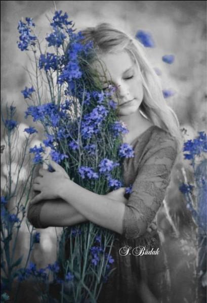 """Qui chantait """"Comme un printemps sur mon trajet, un diamant tombé du coffret, seule la lumière pourrait défaire nos repères secrets..."""""""