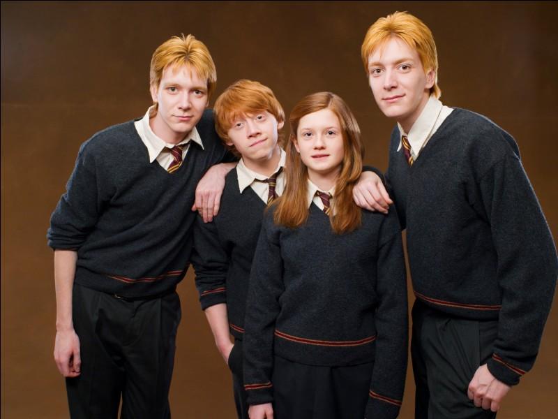 Combien de membres composent la famille Weasley ?