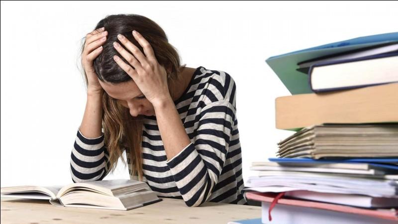 De retour à la maison, vous devriez faire vos devoirs. Comment cela se dit-il en anglais ?