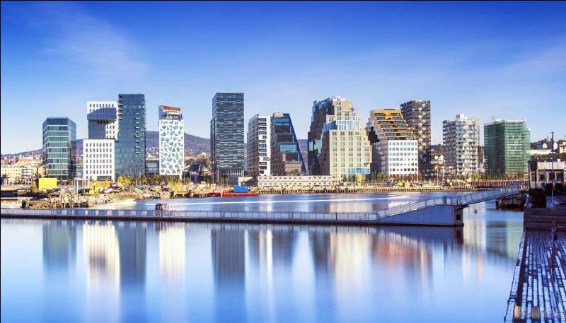 L'ocelot est un félin. Et Oslo est une capitale. Mais de quel pays ?