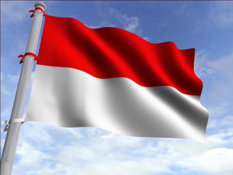 Cet autre drapeau est celui...