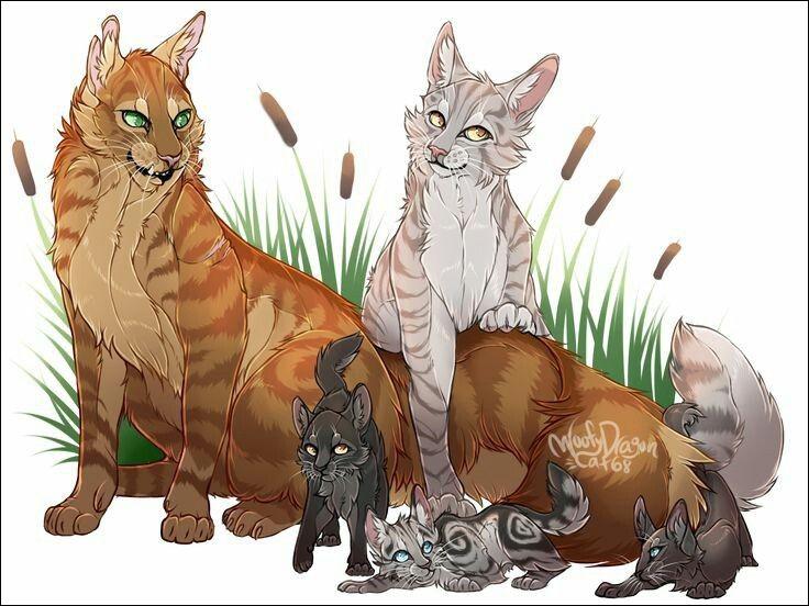 Qui sont les chatonnes du héros ?