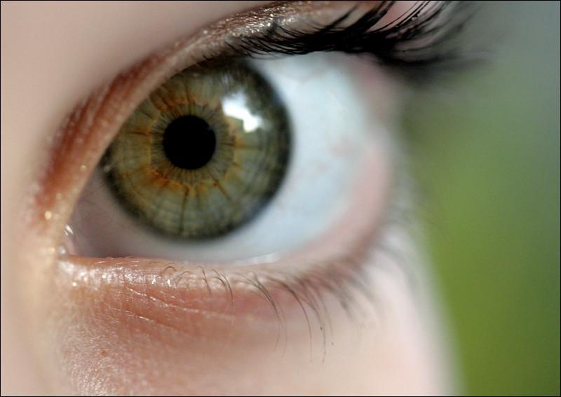Le point noir au milieu de l'oeil s'appelle la pupille.