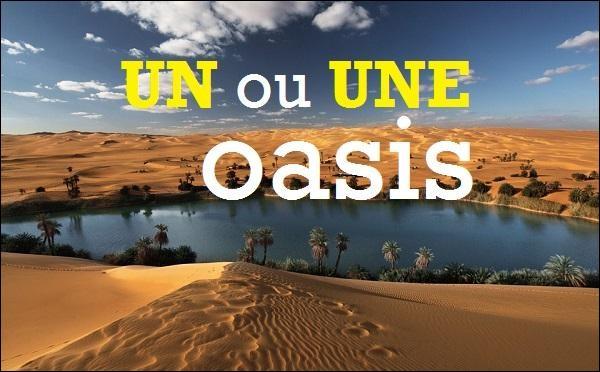 """Le mot """"oasis"""" est-il masculin ou féminin ?"""