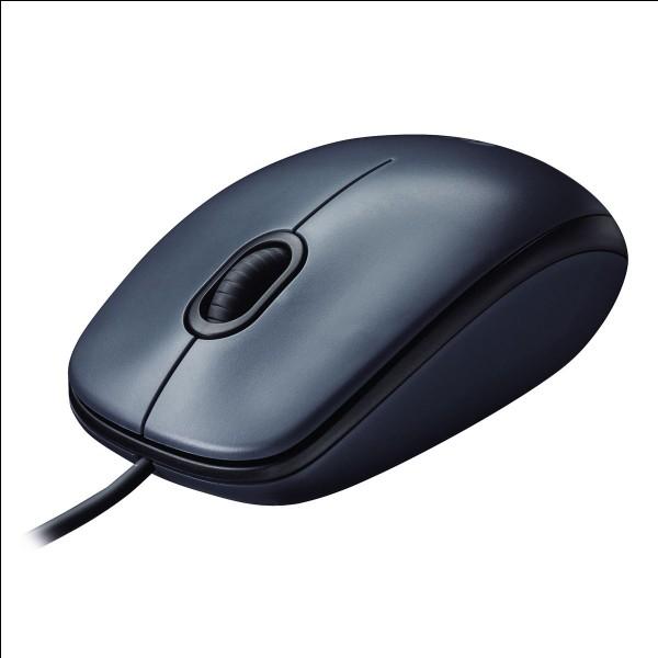 Quel est le nom de ce périphérique d'ordinateur ?