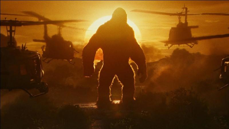 Quel film sur King Kong n'existe pas ?