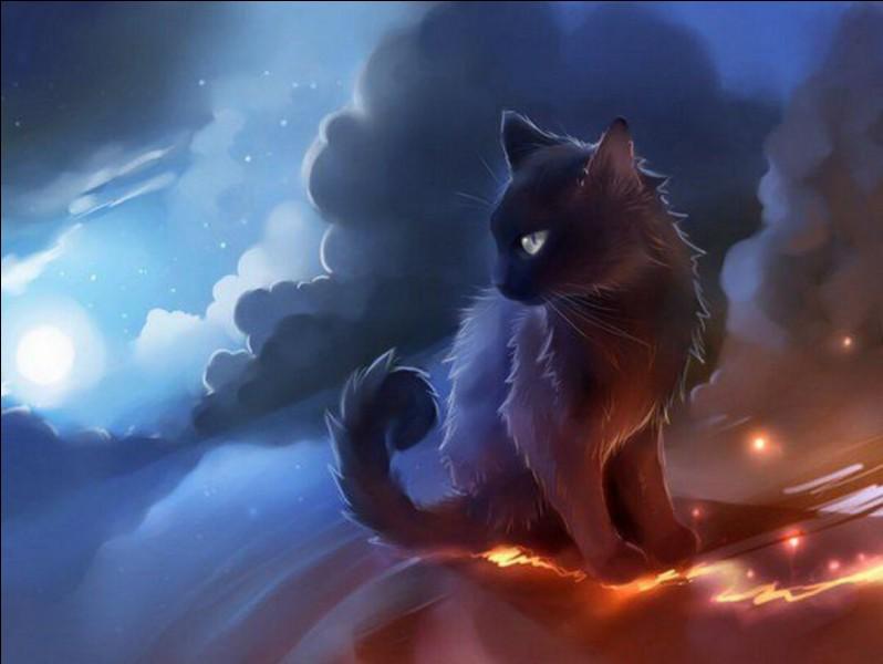 Quel agent Pierre du Zodiac va-t-il envoyer pour terrasser la chatte qui va les aider ?