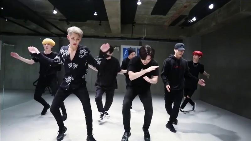 Qui est le danseur principal du groupe ?