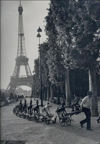 Cette magnifique photographie est une réalisation de Robert Doisneau.