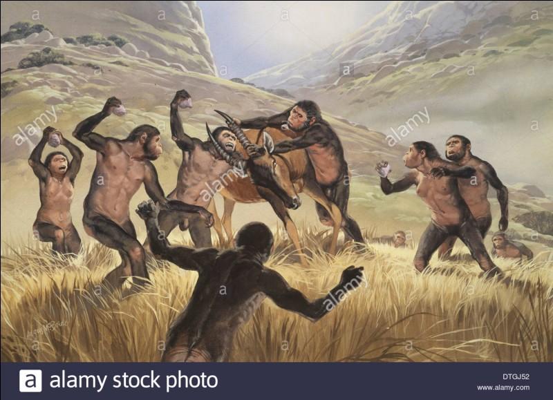 Comment se nomme le premier homme et non pas hominidé ?