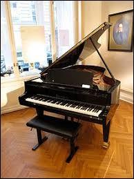 Sur la photo, on voit un piano...